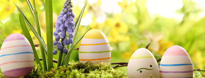 Los Altos Easter Egg Hunt: March 28, 2015