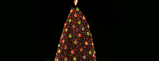 Palo Alto Events - Mountain View Christmas Tree Lighting